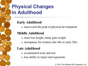 physical and cognitive development in young adulthood